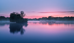 Avalon (Langstone Joe) Tags: mist nature sunrise dawn hampshire mysterious magical avalon excalibur bronzeage kingarthur petersfield ladyofthelake petersfieldlake petersfieldheath sonya7r langstonejoe