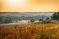 Orange Sky (Kansas Poetry (Patrick)) Tags: kansas flinthills cottonwoodfalls tallgrassprairienaturepreserve patrickemerson patricklovesnancy