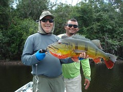 Amazonia 2012 (19)