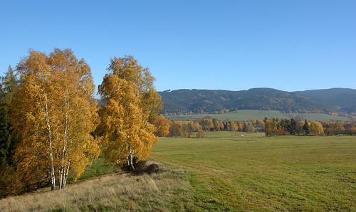 Autumn Landscape near Dolní Žandov