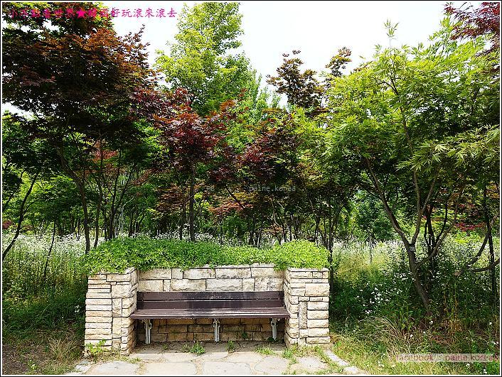 大田韓巴樹木園 (22).JPG
