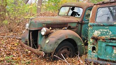 1940 FORD HEAVY DUTY TRUCK..WHATS LEFT OF IT (richie 59) Tags: autumn trees usa ny newyork fall ford overgrown america truck volkswagen outside us weeds junk rust unitedstates weekend sunday rusty headlights hoarding vehicles faded crap rusted shit rusting hoard newyorkstate autos oldtruck automobiles nys oldford fordtruck nystate dutchesscounty 1940ford rustytruck frontend hudsonvalley fomoco abandonedproperty 2015 motorvehicles junktruck fadedpaint brokenwindshield greentruck greenvan americantruck oldfordtruck midhudsonvalley fordmotorcompany dutchesscountyny midhudson ustruck abandonedvehicles 2010s 1940struck volkswagenmicrobus 1940fordtruck rustyford junkvehicles richie59 rustyfordtruck townofwappinger nov2015 townofwappingerny nov12015