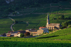 20150821-Canon EOS 6D-5254 (Bartek Rozanski) Tags: vergisson burgundy france rochedesolutre solutre bourgogne valley french summer vineyard village church morning