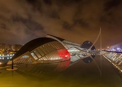 El Pez - El Peix - The Fish (José Ferrando) Tags: color valencia cac ciudaddelasciencias reflejos canon1740mml canon6d