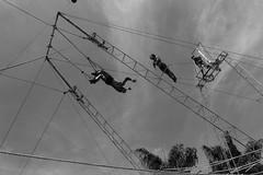 Nino Rocha Fotografia (nino rocha fotografia) Tags: circo osasco céu fotografia visual espetáculo trapézio trapezista ninorocha