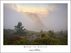Behind the Curtain (DKNC) Tags: roundbald roanhighlands northcarolina nc tennessee tn fog mist mountainash sunrise mountains autumn daleking