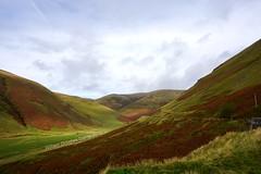The Dalveen Pass (stonetemplepilot5) Tags: dalveenpass scotland sony sonya6000 a6000 dumfriesandgalloway landscape green sonyflckraward concordians
