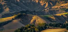 Campagna di Apiro (emanuelezallocco) Tags: campagna marche marchigiana apiro macerata italy landscape fields autumn fall 2016
