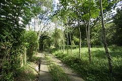 _DSC9723 (nonesmanneslond) Tags: finca barbosa colombia antioquia medellin farm farmlife