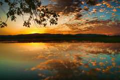 Sunset-Branch-above (Gary.Lamprecht) Tags: canont6s mississippiriver backwaters backwater sunset reflection topaz