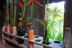 DSC06375 (Peripatete) Tags: bali canggu resort beach desaseni nature flowers fullmoon culture tradition architecture food