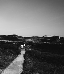 Long Road (Dan-Schneider) Tags: streetphotography schwarzweiss blackandwhite bw silhouette moment monochrome mood olympus omdem10 people silence couple oll