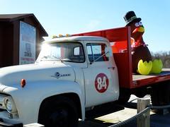 Survivor (e r j k . a m e r j k a) Tags: pennsylvania washington eightyfour roadside figure ford truck turkey thanksgiving inflatable whimsy autumn fall pa519 i79pa pa136 erjkprunczyk