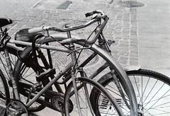 Torino (Davide Cerrato) Tags: 35mmphotography 35mm 400asa hp5plus ilford bike torino bnw blackandwhite ishootfilm filmsnotdead filmcamera filmphotography 50mmlens nikkorlens nikkor50mm nikkor nikonphotography nikonfe nikon