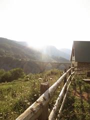 IMG_5253 (maru.hvozdecka) Tags: guca trumpet festival balkan music serbia montenegro krka dubrovnik kotor oldtown unesco gipsy tara bridge fortress church summer waterfalls