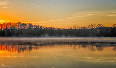 Sunrise Departure (dngovoni) Tags: virginia autumn clouds fall fog jamesriver landscape sunrise water wildlife