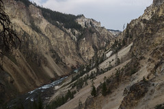 "View of Grand Canyon of the Yellowstone from Uncle Tom's • <a style=""font-size:0.8em;"" href=""http://www.flickr.com/photos/63501323@N07/30519582810/"" target=""_blank"">View on Flickr</a>"