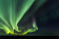 IMG_1298 (Mikl - Concept-Photo.fr (CRBR)) Tags: hverfjall auroreborale myvatn islanderoadtripautotourwildsauvagenature2016octobreoctober islanderoadtripautotourwildsauvagenature2016octobreoctob northernlight norurlandeystra islande is