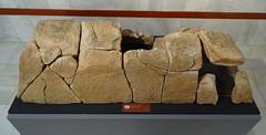 Estructura funeraria Museo Numantino Soria 02 (Rafael Gomez - http://micamara.es) Tags: estructura funeraria museo numantino soria