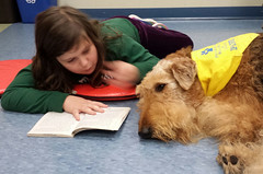 Georgetown Branch PAWS to Read on November 8, 2016 (ACPL) Tags: acpl allencountypubliclibrary fortwaynein georgetown geo pawstoread 2016