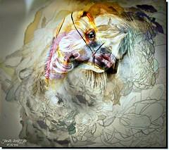 SILENCE (jawadn_99) Tags: explore stalion horse arab horses black white horses22 fantastic supershot scout poster photography flickr favorite art animal raising galope red vivid blue interrestigness vividimagination photoart kuwait arabian gulf 40faves coth5 enteredinsyb interestingness