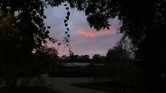 Une promenade dominicale au Jardin des Plantes - Soleil couchant (jeanlouisallix) Tags: rouen seine maritime haute normandie france jardin parc park garden arbres nature paysage landscape panorama soleil couchant sunset