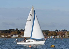 Nov13028a (Mike Millard) Tags: pooleyachtclub pooleharbour cruisers