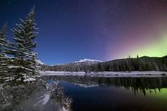 Forgetmenot Christmas Card (John Andersen (JPAndersen images)) Tags: aurora clouds forest forgetmenotpond kananaskis mysterious night orion reflections sirius stars