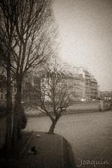 Paris1800?? 2 (Joaqunrod) Tags: paris francia europa bw antigua sena rio