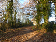 P1450774 (Joy Shakespeare) Tags: coundonwedge brownshillgreen coventry uk landscapes