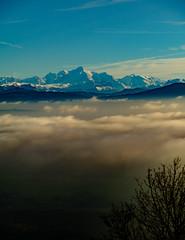 21564-2016 (Theo Olfers) Tags: zwitserland switzerland suisse schweiz alps alpes alpen clouds cloud wolken lake geneva lac leman fog haze hazy swiss natuur nature nyon landscape landschap xf 18135 xpro2 vaud