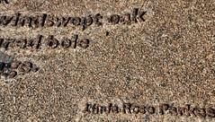 Poem (Fragment) (Cross Duck) Tags: lindaroseparkes jersey channelislands poem fragment freedomtree sthelier