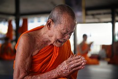 The end of suffering is near (Bn) Tags: life old school portrait people man face thailand religious pain amazing search movement god nirvana expression bangkok buddha buddhist religion crying deep monk buddhism thoughts end donation emotional population sensuality enlightenment 95 suffering powerful topf100 wrinkles painful ending witness siddhartha serve extremes craving teachings relinquish thailands theravada 100faves officiants  watthungkhru