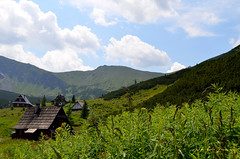 Bidean (Erre Taele) Tags: mountains verde green poland polonia montes zakopane balcanes mendiak berdea tratamountains montestatras balcanian mendikatea tratamendiak