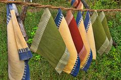 Pegless (gecko47) Tags: closeup kerala laundry hanging ropes clotheslines cochin washing kochi veli drying placemats fortkochi coirrope nopegs twistedropes dhobikhanalaundry cooperativelaundry