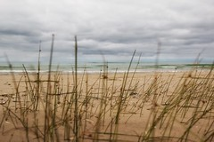 The sound of silence (s@ssyl@ssy) Tags: beach sand waves cloudy relaxing calm shore seashore lakehuron summervacation saublebeach sandgrass