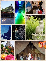 Disney collage (haphopper) Tags: collage tdl disney tokyodisneyland tdr tokyodisneyresort themepark entertainment show showbase onemansdreamiithemagicliveson mickey attractions ride castle cinderellacastle princess princessprince prince peterpan blue cat stone hauntedmansion chipndale superduperjumpintime kids colorful tomorrowland crittercountry westernland train transportation water river riverside view rose flowers electricalparadedreamlights