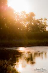 Magic in Vendicari (Giovanni Tumminelli) Tags: light italy sun lake relax natural magic reserve atmosphere syracuse sicily vendicari armony