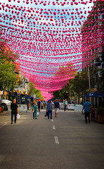 Pink Balls hanging over Sainte-Catherine Street in Montreal (A Great Capture) Tags: park street trip travel pink light vacation music canada art festival by night french photographer place shot montréal mtl quebec getaway montreal object ashley country great balls floating roadtrip canadian aerial des entertainment québec co l hanging janet suspended capture été spectacles parc luminous qc centreville saintecatherine duffus yul pq quartier agc echelman ald mlt canadiancity islandofmontreal a saintecatherinestreet francophonesducanada adjm ashleysphotoscom wwwagreatcapturecom agreatcapture