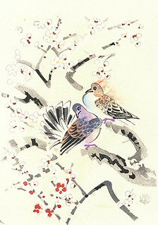 Plum and rock dove