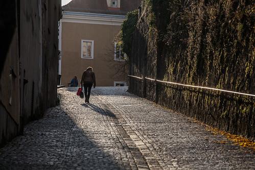 Steyr (2015)