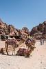 DSC_1674 (vasiliy.ivanoff) Tags: voyage trip travel tour petra jordan journey traveling neareast الأردن البتراء петра иордания ближнийвосток الشرقالاوسط خاورنزدیک המזרחהקרוב