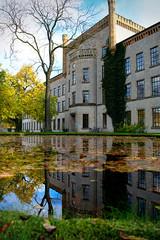 Leaf Mirror (scosu42) Tags: autumn lake reflection building tree fall water architecture leaf bielefeld
