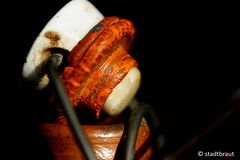 swing top (stadtbraut) Tags: ceramic seal porcelain plop leaking stoneware porzellan brittle keramik rubberring oldbottle dichtung bgelflasche undicht steinzeug gummiring sprde swingtop bgelverschluss rubberseal untight macromondays weatheredandworn tonflasche swingstopper alteflasche gummidichtung steinzeugflasche altetrinkflasche olddrinkingbottle bgelflaschenverschluss