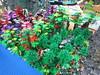 IMG_6859 (Festi'briques) Tags: montagne dragon lego exposition fantasy hotdogs jeu caverne fantastique auxerre 2015 scoubidou festibriques