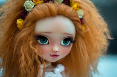 Bye bye Persphone, Welcome Nicolas (0ctavie) Tags: flowers blue autumn red orange bronze automne hair eyes full planning wig mohair groove pullip custom custo jun ovie gigner octavie stica natrume 0ctavie 0vie