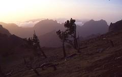 Abendstimmung am Pico Arieiro (fotoculus) Tags: portugal journey madeira urlaubsreise diascans rundreise1995