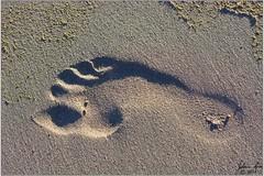 DSC_1245 Voetspoor: optiese illusie (johann.spies) Tags: hermanus opticalillusion footprint 2015 voetspoor kersfees optieseillusie