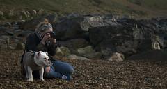 Supervising (Barton-on-Sea) (smalley.nigel) Tags: sea dog coast rocks photographer hampshire bulldog coastal coastline photographed southampton bartononsea