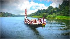 DSC_1557 (|| Nellickal Palliyodam ||) Tags: india race boat snake kerala krishna aranmula avittam parthasarathy vallamkali parthan palliyodam malakkara nellickal jalothsavam edanadu